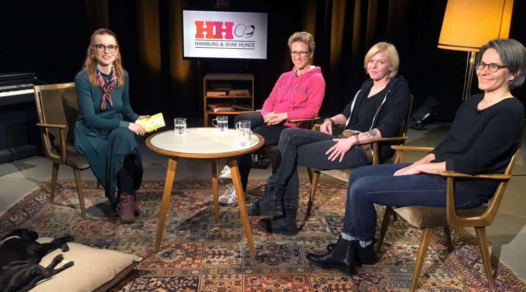 HAMBURG & SEINE HUNDE | Das Nordrudel zu Gast bei TIDE TV Hamburg